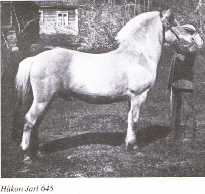 HÅKON JARL N 645